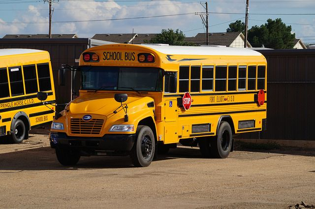 Fort Elliott Cisd 2015 Blue Bird Vision With Images School Bus