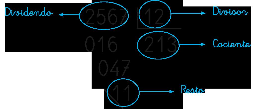 Cómo Aprender Enseñar A Dividir Por Dos Cifras En Primaria Cuadernos Rubio Divisiones De Dos Cifras Material Didactico Matematicas Matemáticas Para Niños
