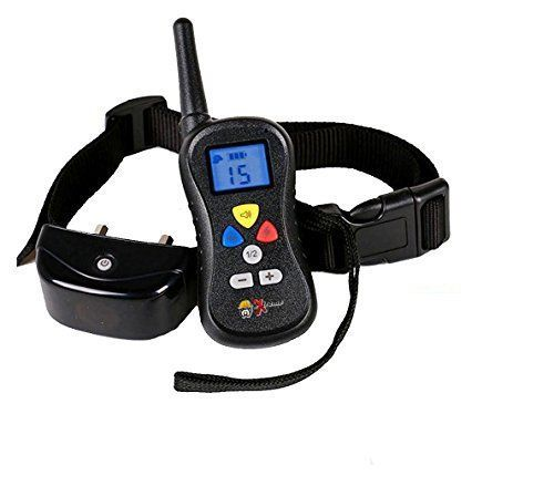 Extreme G2 Dog Training Collar With Remote For Dog Obedience