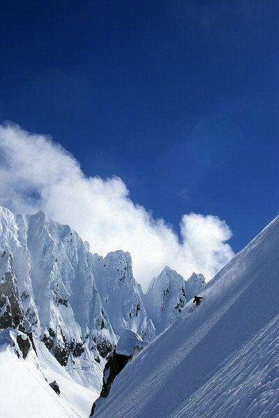 Lee Cohen Photography - Snow || alta ski area, ut