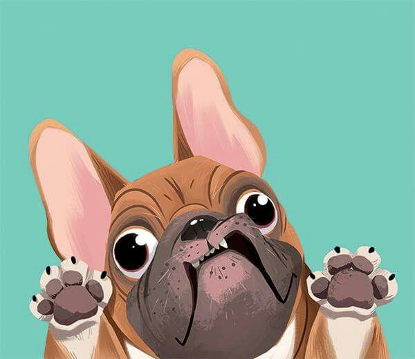 Pin By Xiao Yu Lin On Animals French Bulldog Drawing French