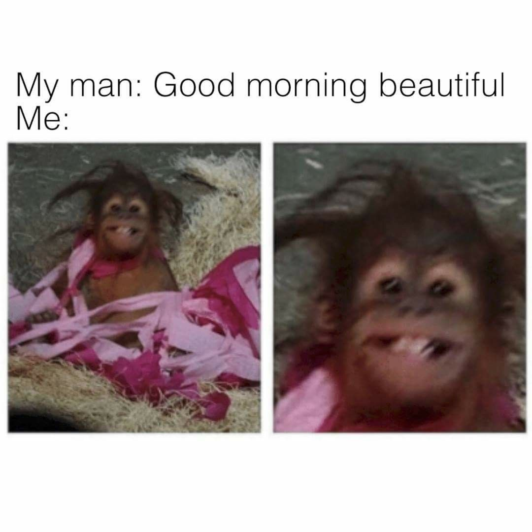 cute bf morning memes