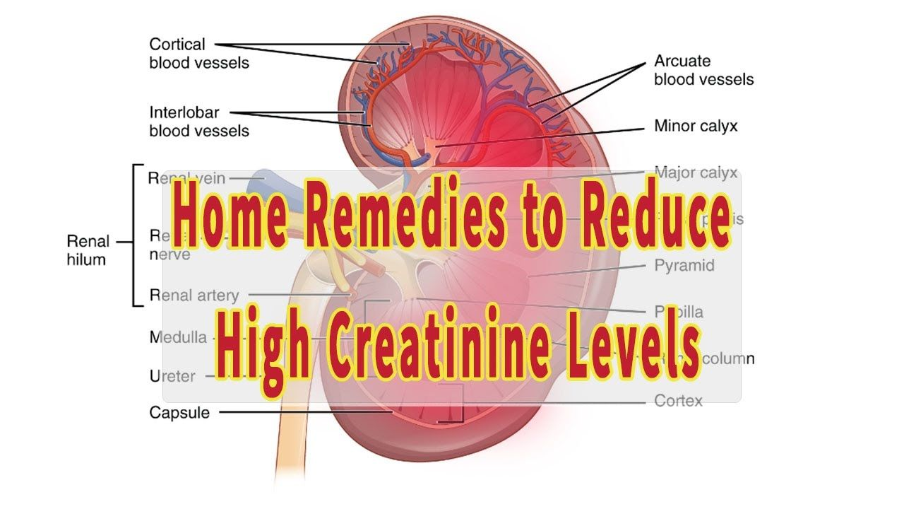 Top 7 home tips to bring down creatinine levels naturally muscle top 7 home tips to bring down creatinine levels naturally creatinine by ccuart Images