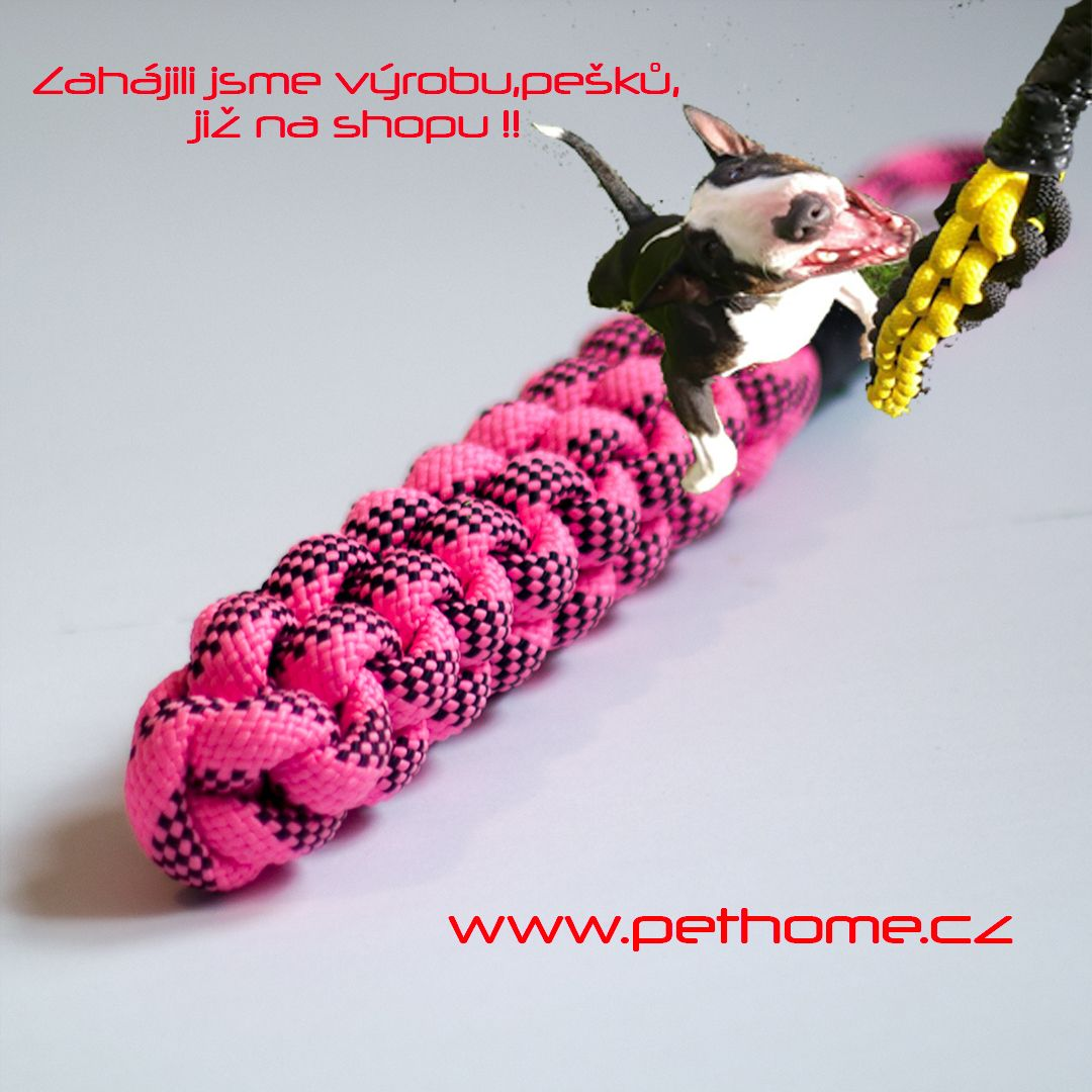 Pin on www.pethome.cz