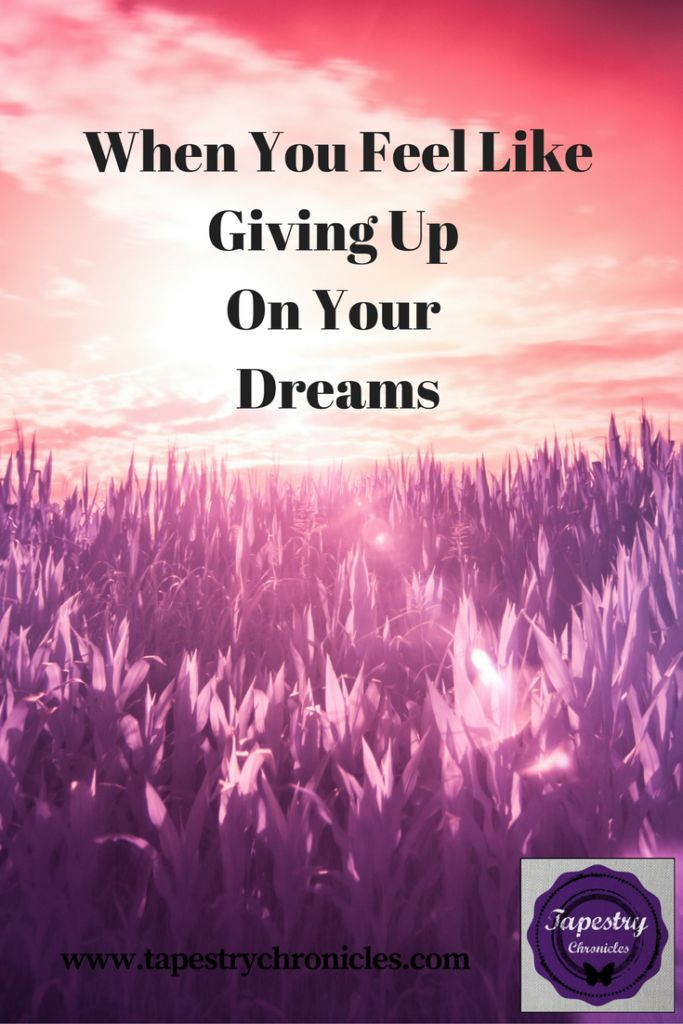 When You Feel Like Giving Up On Your Dreams | Feel like