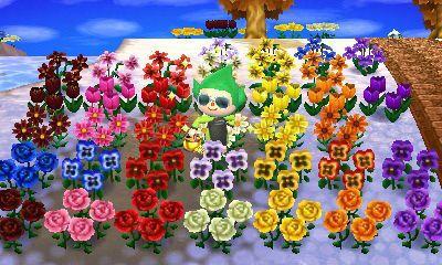 Flower Hybrid Chart Http Www Thonky Com Animal Crossing New Leaf