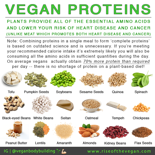 Rise of the Vegan (With images) Vegan protein, Plant