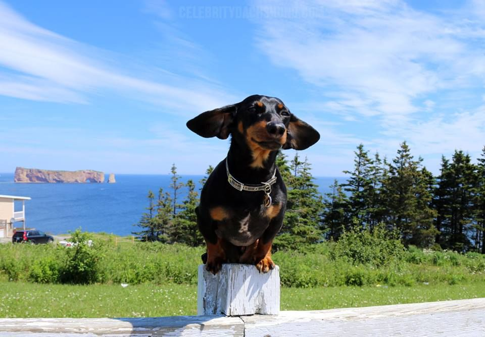 At The Famous Perce Rock In Gaspe Quebec Via Crusoe The