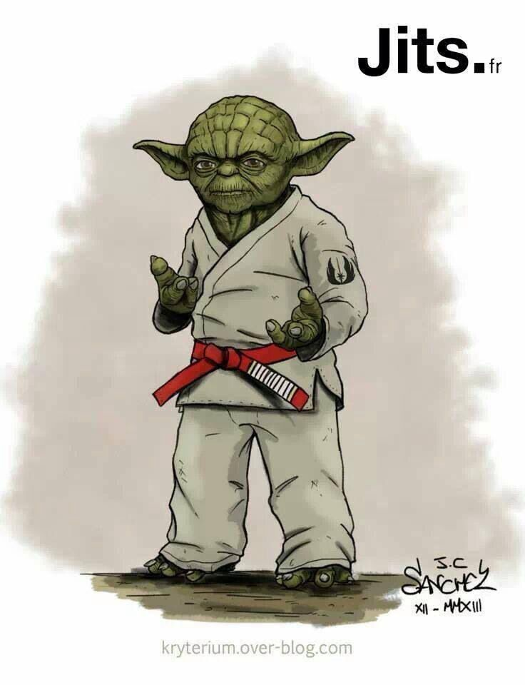 RED BELT YODA = BJJ Wisdom : if you love #MMA & Brazilian ...