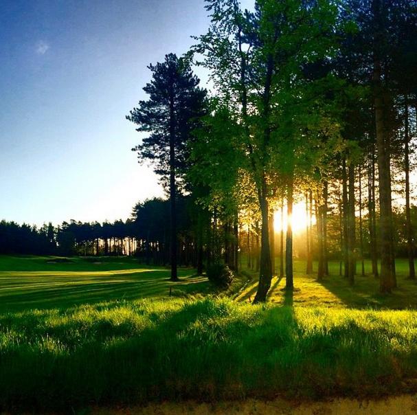 21++ Bearwood lakes golf viral