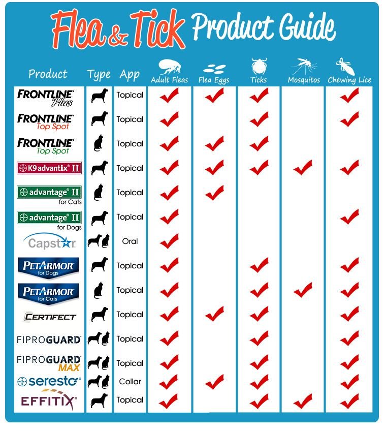 Flea Amp Tick Product Guide Vetting Your Vet A Day In