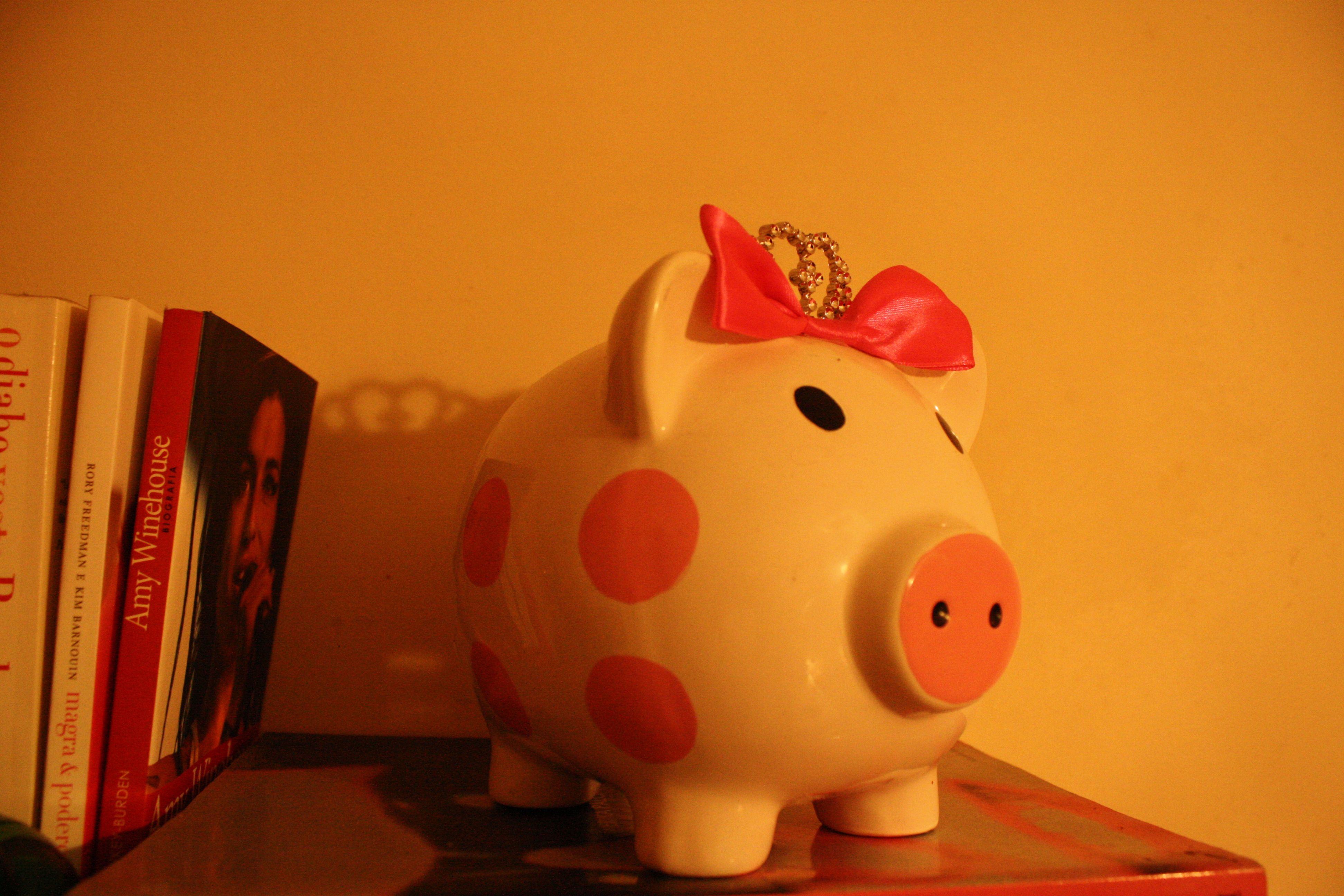 My pig collection - NY 2