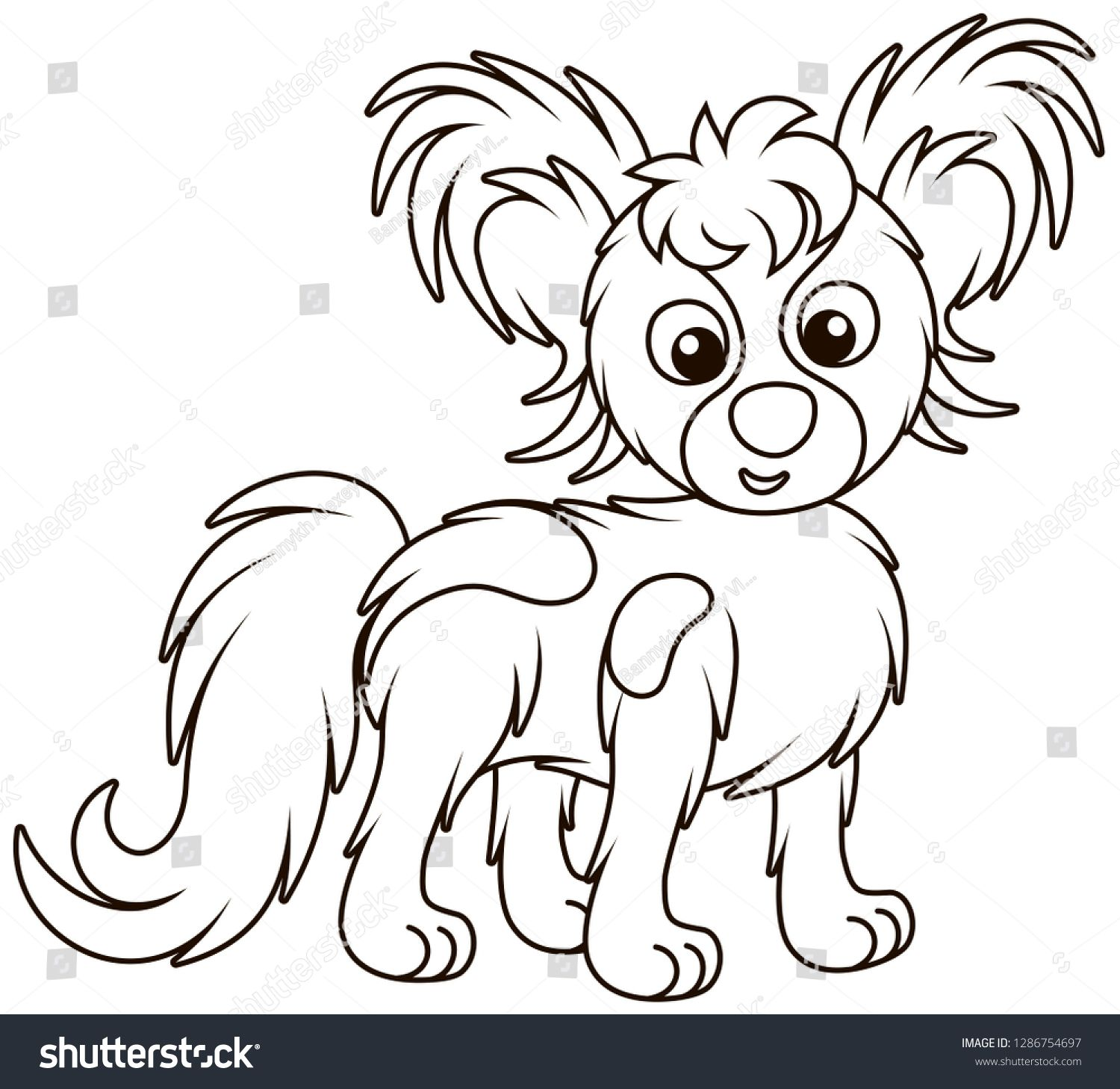 Small Funny Dog Papillon Friendly Smiling Black And White Outline Vector Illustrations In A Cartoon Style For A Coloring Cartoon Styles Funny Dogs Vector Free [ 1458 x 1500 Pixel ]
