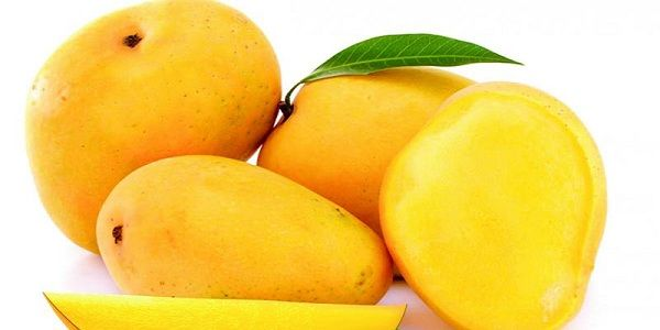 We are the Mangoes Exporters and Suppliers in India  We supply a