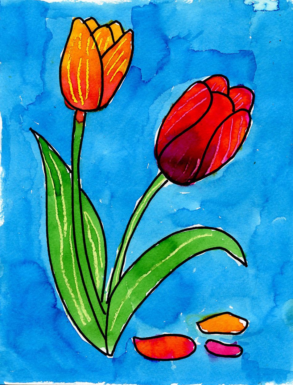 Draw A Tulip Spring Art Projects Flower Art Spring Art