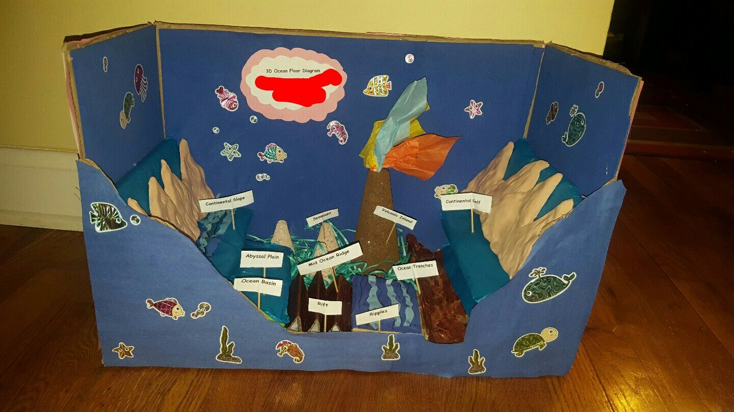 3d Ocean Floor Diagram 5th Grade Oceanfloor 3d