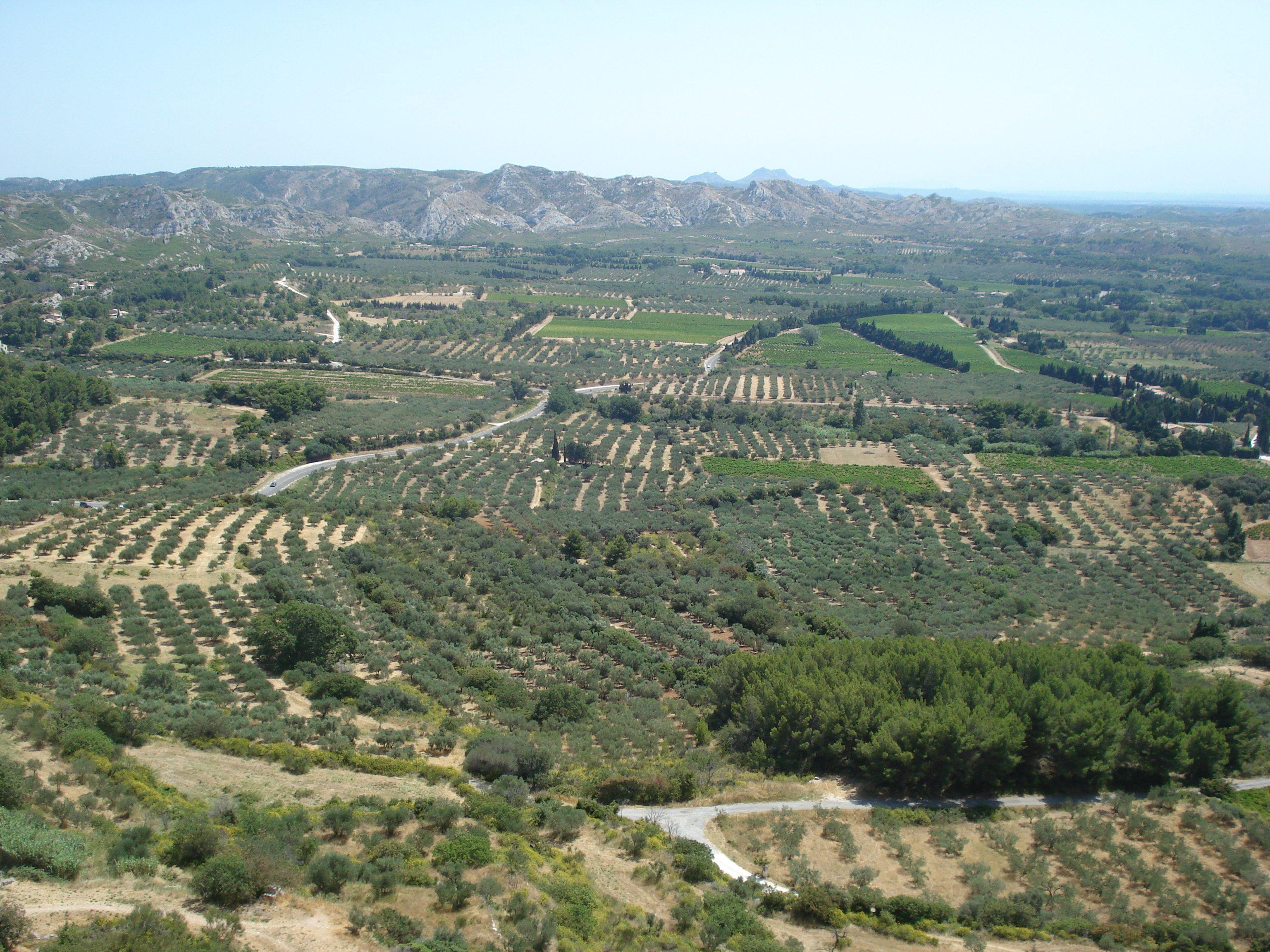 Les Baux de Provence - plaine au pied du château