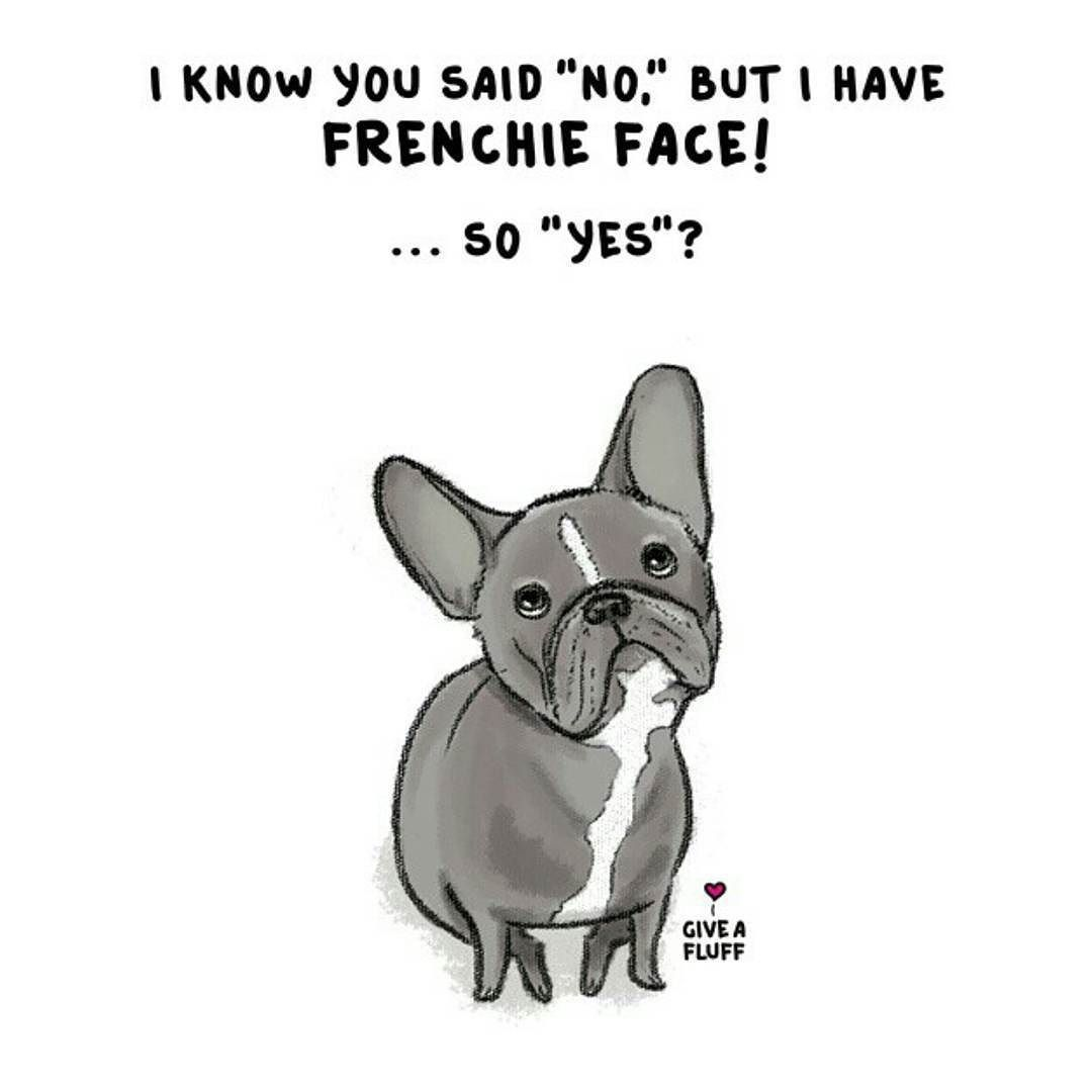 Cute Quotes In French: Batpig & Me Tumble It : Photo
