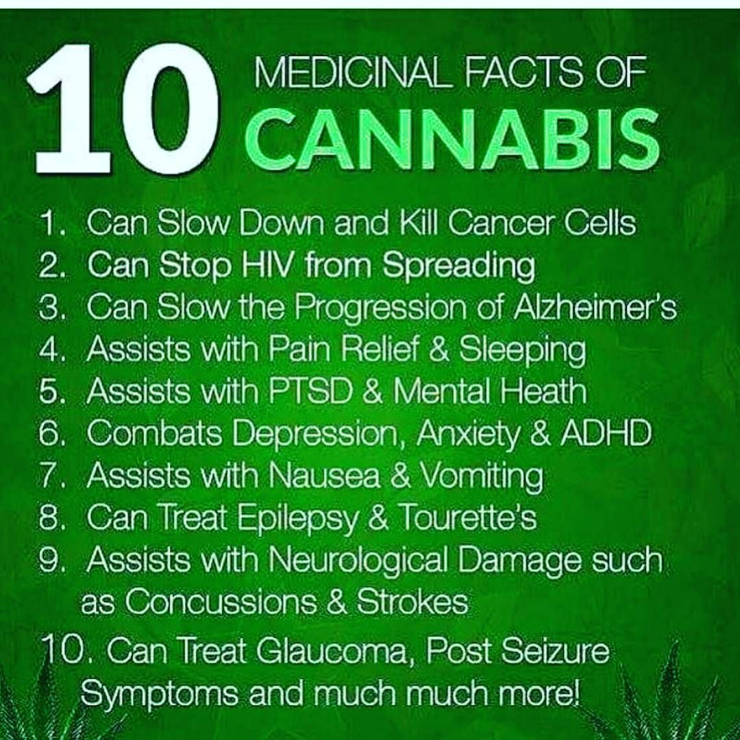 pin by plantingpot on stoned quotes | pinterest | cannabis