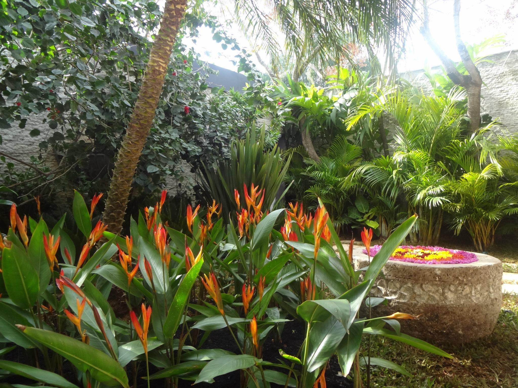 Heliconia La Planta Preferida En Jardines Tropicales Y: GILBERTO ELKIS PAISAGISMO Www.elkispaisagismo.com.br