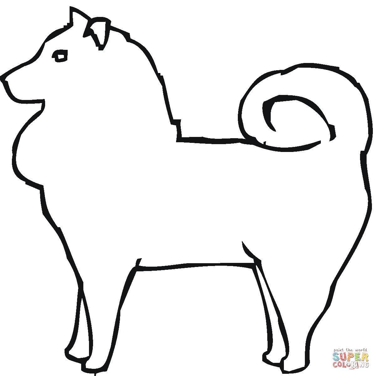 Pomeranian   Super Coloring   Free printable coloring ...