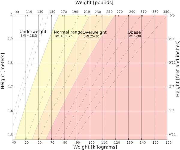 BMI Chart An article about BMI