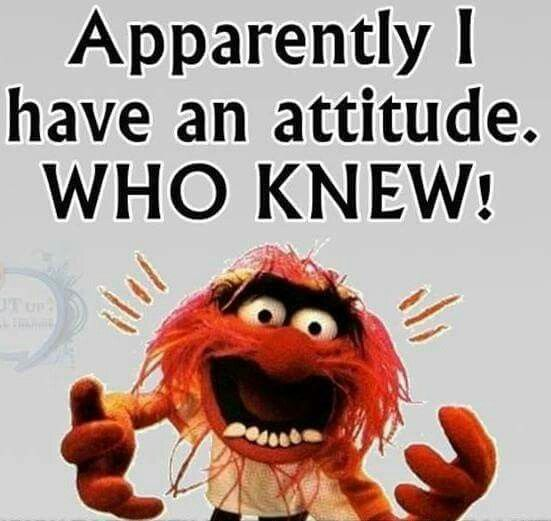 Muppet Christmas Meme: Apparently I Have An Attitude. Who Knew! Lol