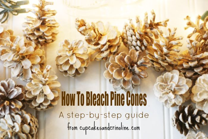 How to bleach pine cones - a step-by-step guide from http://www.cupcakesandcrinoline.com