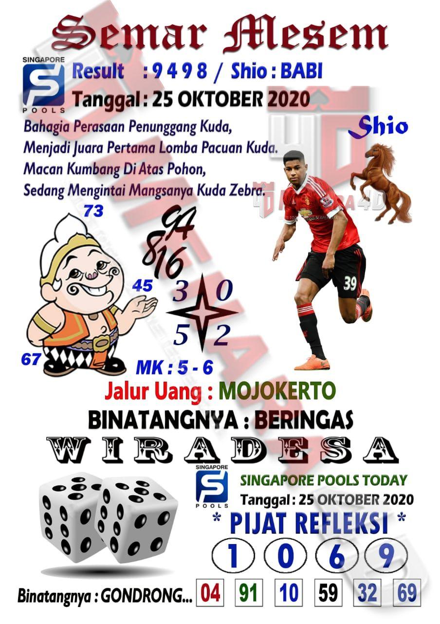 Syair Singapore 25 Oktober 2020 Perasaan Binatang Macan Kumbang