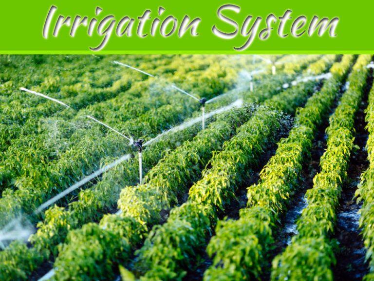 Advantages Disadvantages Of Irrigation Systems Landscape