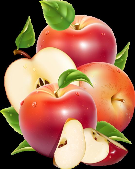 delicious apples fruit clip art