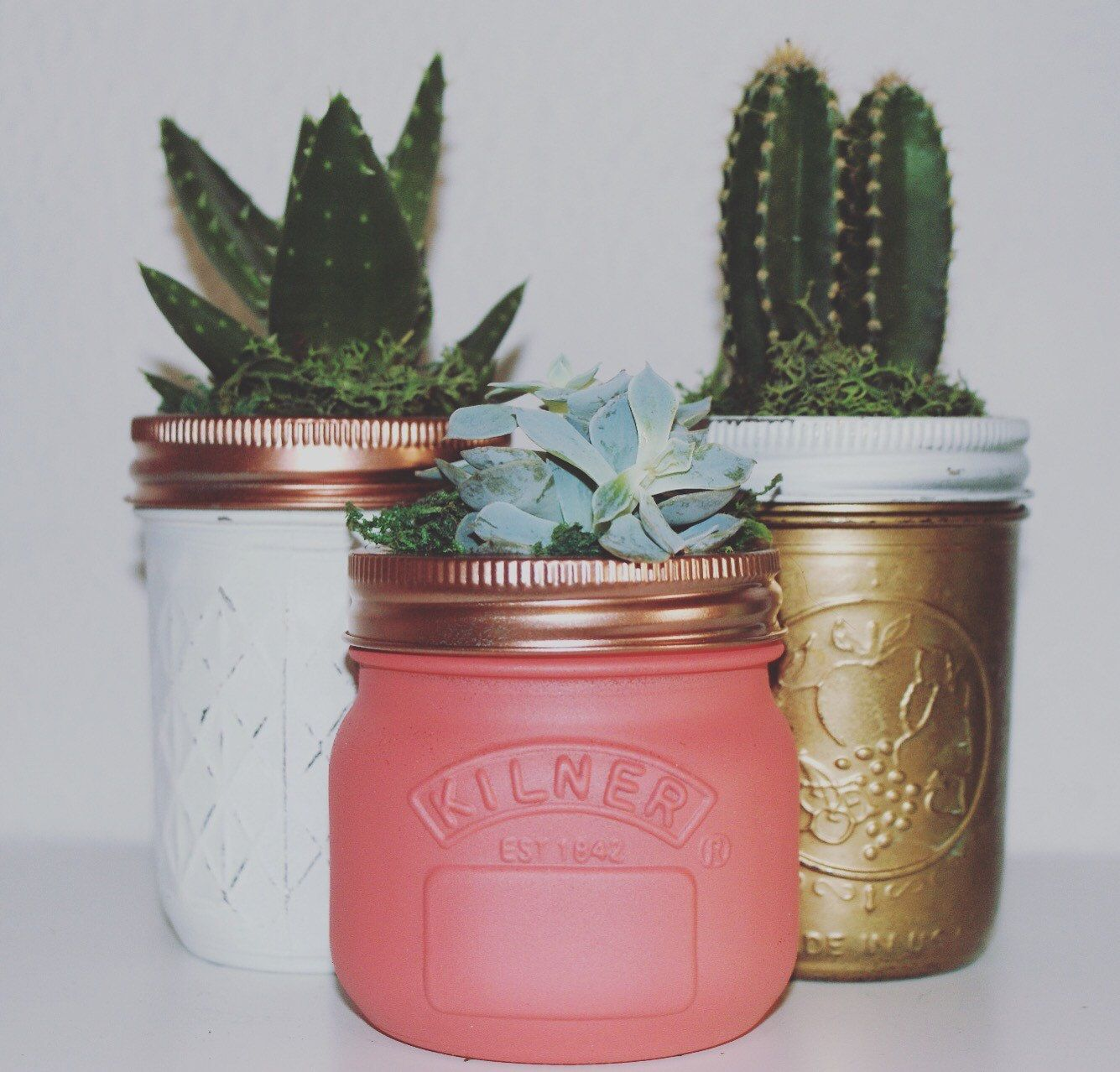 Succulents In Beautifully Hand Painted Ball Mason Jars, Home Decor, Cactus