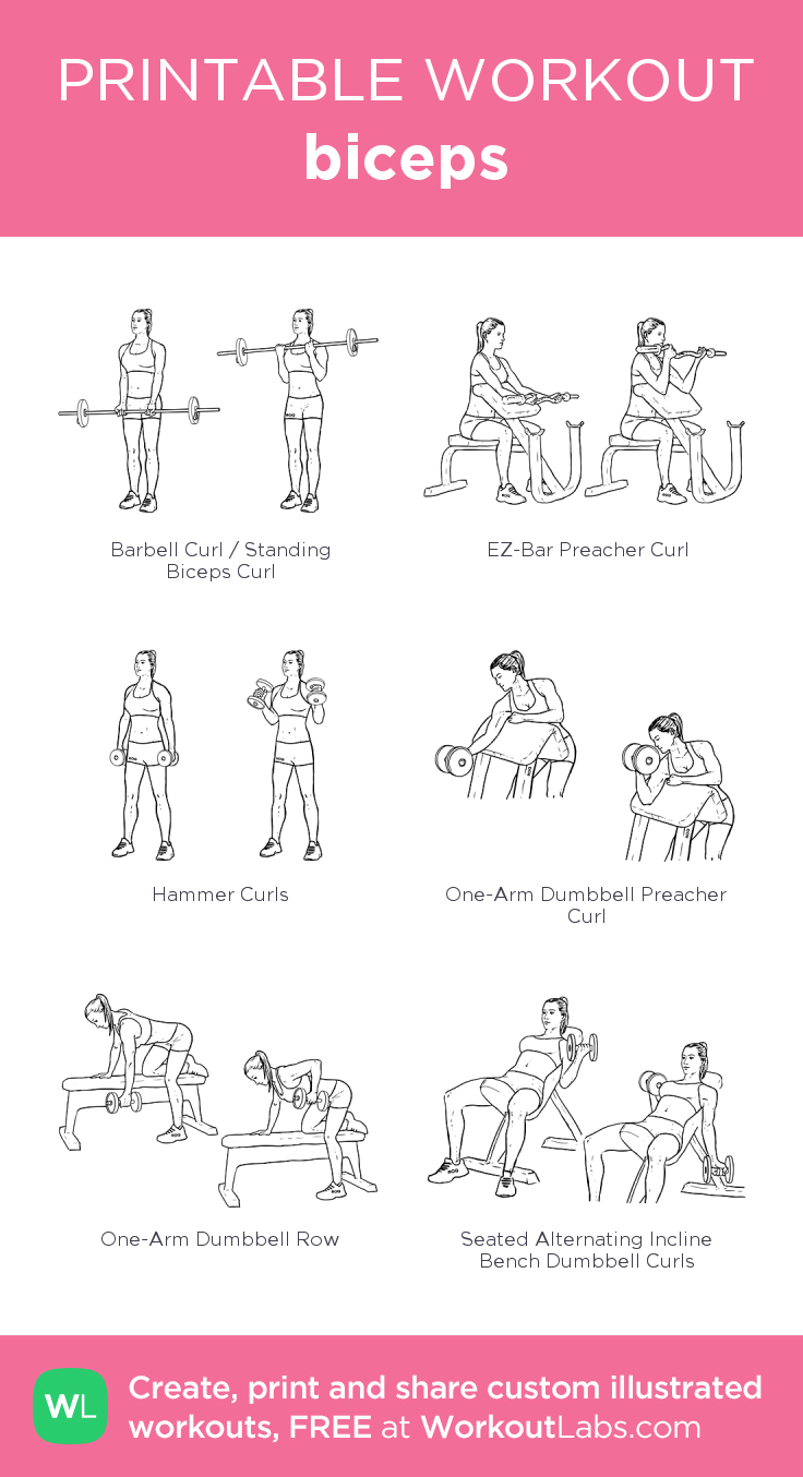Build Sexier Biceps Bicep workout gym, Bicep and tricep