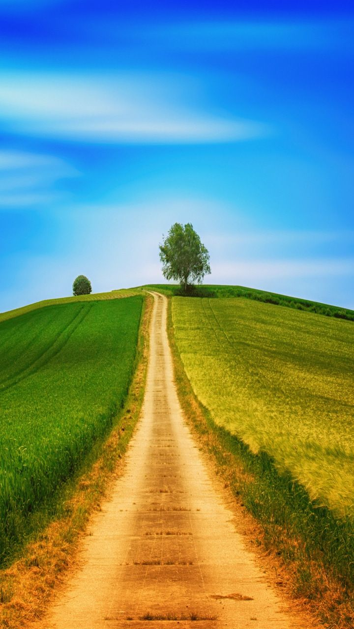 Dirt Road Landscape Sunny Day Blue Sky Tree 720x1280 Wallpaper