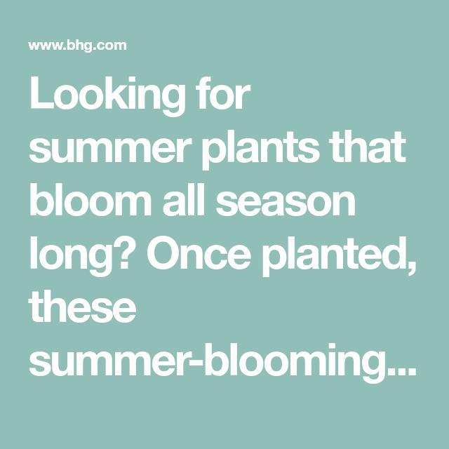 4 Season Garden Plan