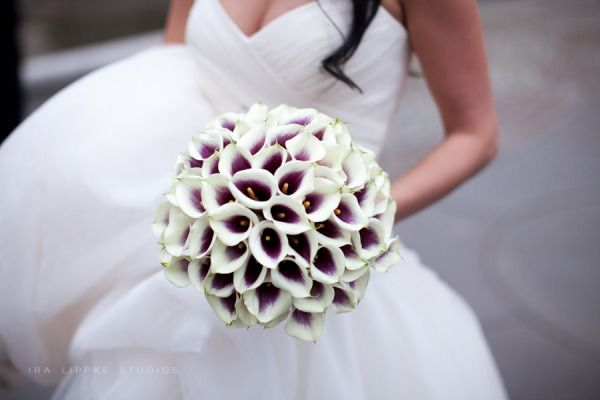 calla lily bouquet. Like the purple centers. LOVE LOVE LOVE the shape