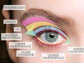 Aplicar sombra de ojos: maquillaje perfecto para tus ojos La guía de sombras de ojos para …