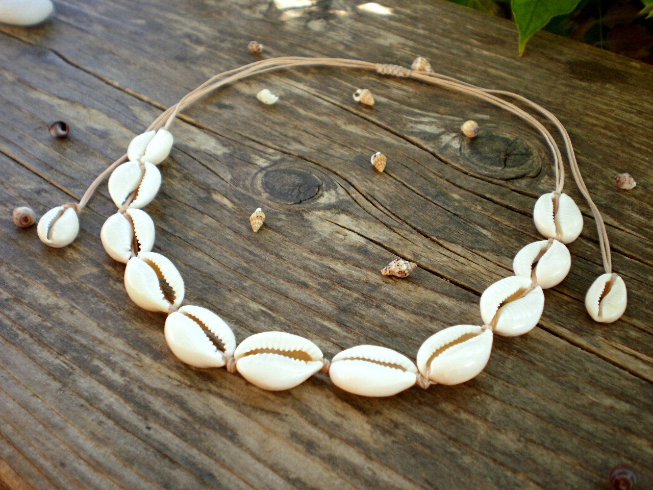 ef430ae260d25 Shell necklace, cowrie shell choker, seashell beach jewelry, puka ...