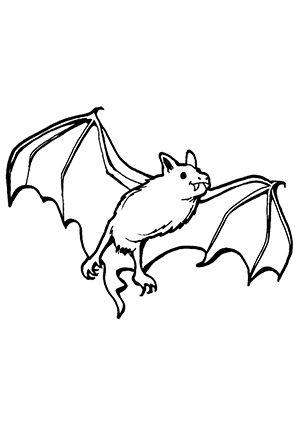 Fledermaus Malen Google Suche Fledermaus Malvorlagen Malvorlage Dinosaurier Tiervorlagen