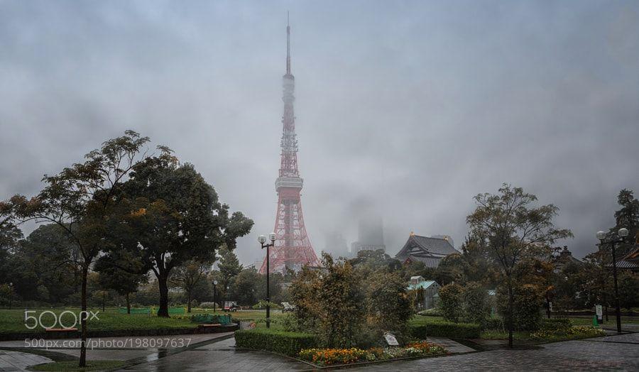 Popular on 500px : Tokyo Tower by jimbos