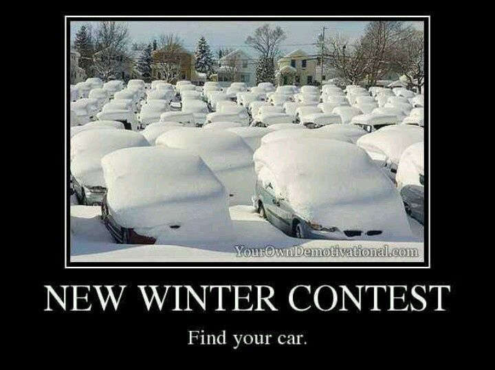 Funny Winter Pictures Winter Contest Funny Winter Funny Winter Pictures Winter Humor Weather Memes