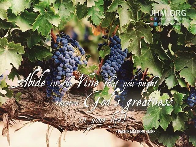 psalm 37 and the grapes of Psalm 107:37 verse (click for and young converts are the tender grapes a truly wise person will treasure in his heart this delightful psalm from it, he will fully understand the weakness and wretchedness of man, and the power and loving-kindness of god.