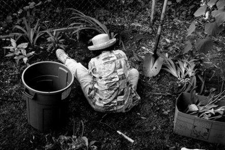 Terrain, graines, outils : comment jardiner quand on n'a que ses mains