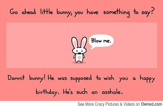Birthday Bunny Has Something To Say To You Happy Birthday Funny Funny Happy Birthday Images Birthday Quotes Funny