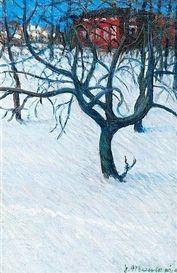 JANNE MUUSARI Winter Night