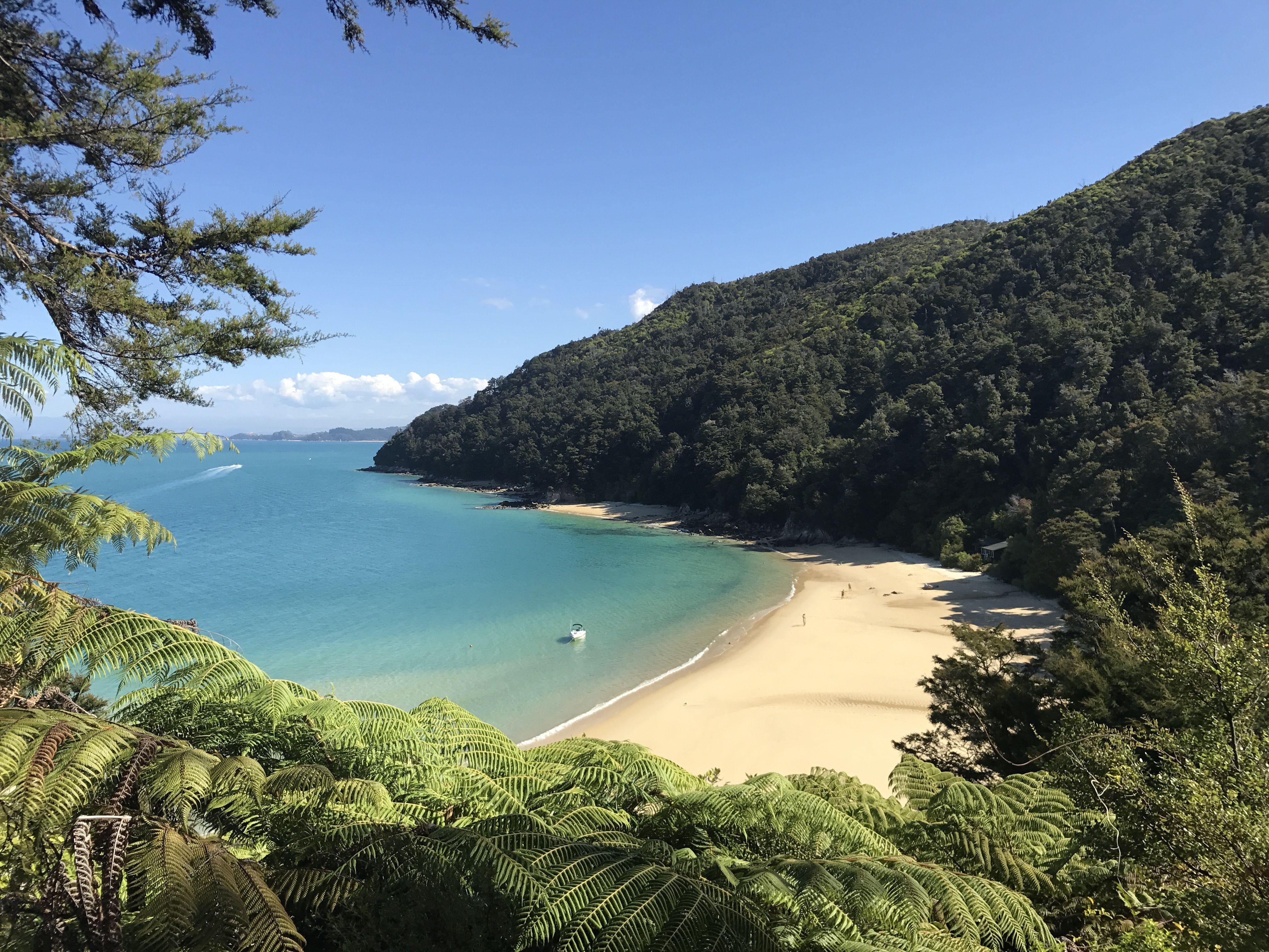 Fiordland National Park, NZ | Travel, National parks