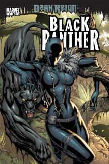 Black Panther X Reader
