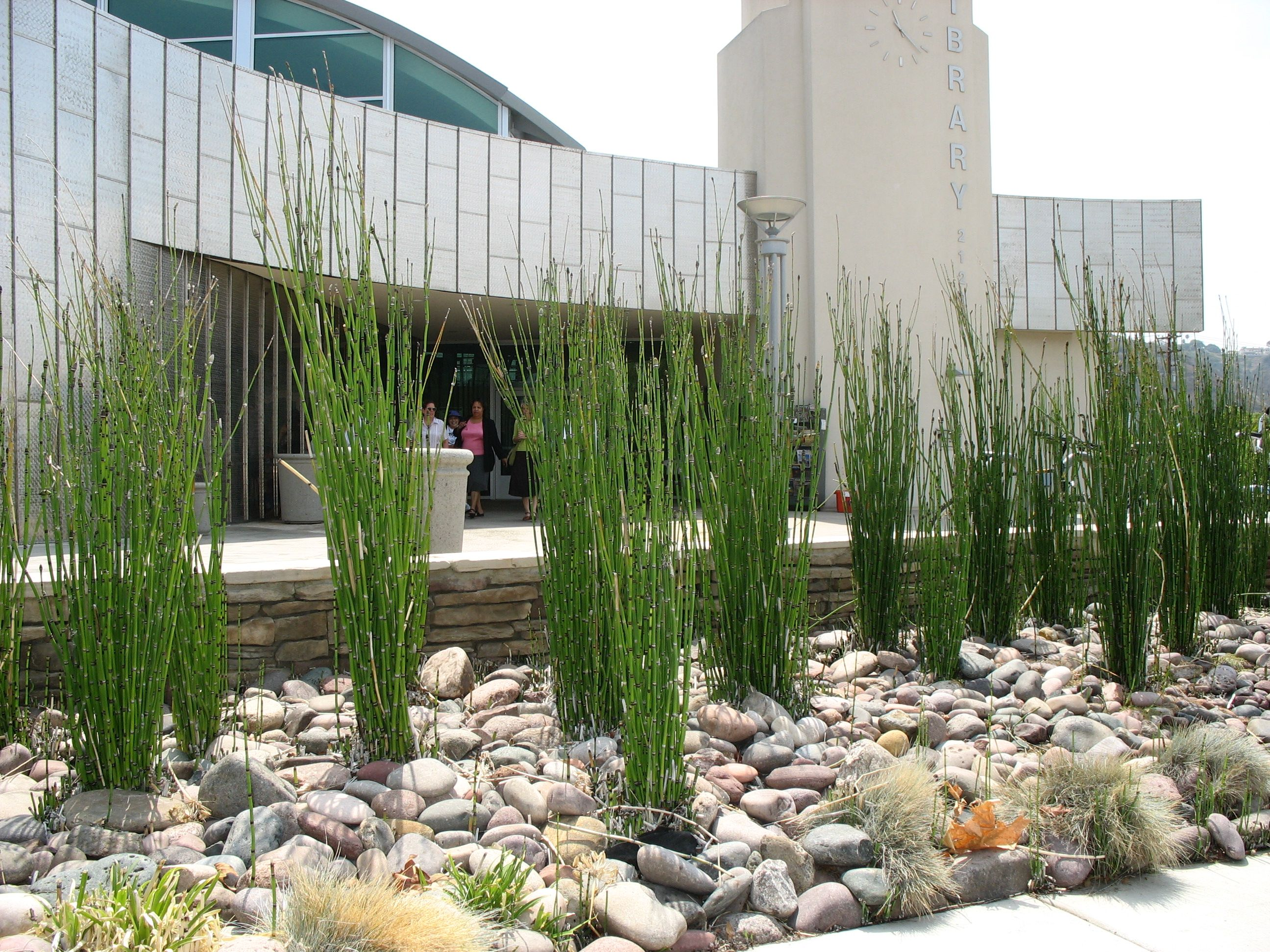 dry creek bed landscaping ideas | http://www ...
