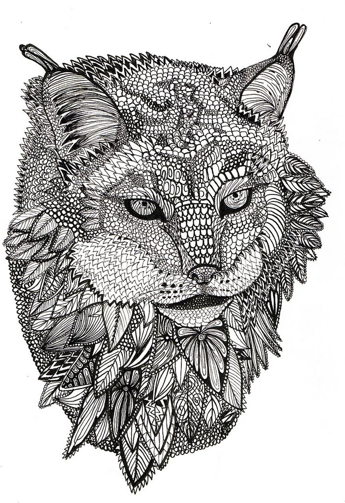 Lynx Animals Adult Colouring