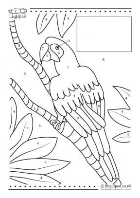 free download for language tutors colour in parrot blank for your language - Blank Pictures To Colour
